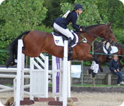 3 Day event rider uses Equine Therapist to keep her horse in peak condition